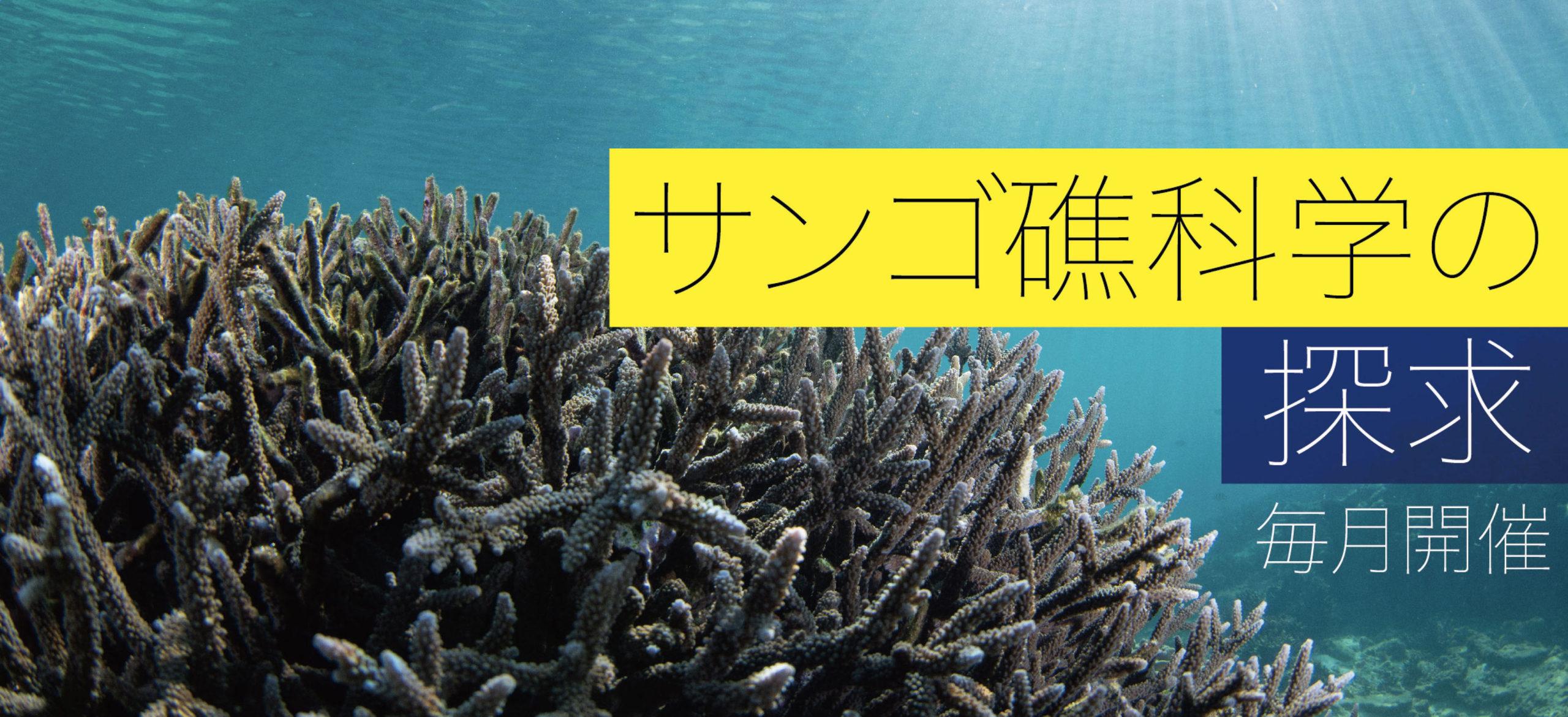 科学者の卵たちへ!オンラインセミナー「サンゴ礁科学の探求」【中学生】【高校生】